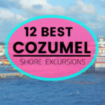 best cozumel shore excursions